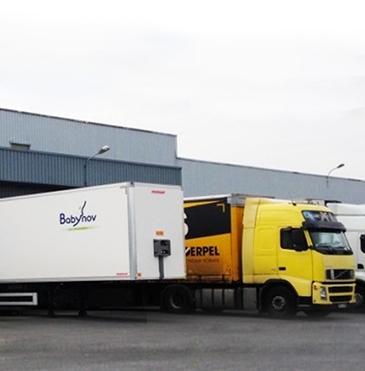Chaîne logistique avec entrepôts décentralisés en Europe